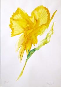 Klangz Gelb Büro Blume kl